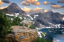 Glacier National Park, Montana, Bernard Chen, Horizontal, Outdoors, Day, Nature, Tranquility, Scenics, Tranquil Scene, Beauty In Nature, Non Urban Scene, Environment, Standing, Side View, Full Length,