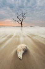 South Carolina, Edisto Island, Botany Bay Plantation, Sunrise, beach, sea shells, long exposure, sand, motion, atlantic, ocean