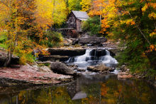 Autumn, Fall, Foliage, Mill, Creek, Wv, Water Wheel, West Virginia, Fall Colors, Babcock State Park, Grist, Fayette County, New River Gorge, Glade Creek Grist Mill, Day, No People, Tree, House, Water,
