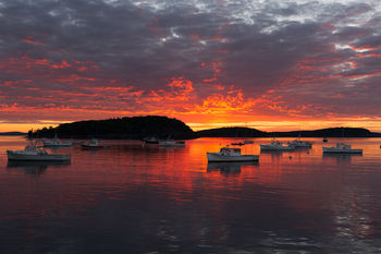 Good Morning Acadia