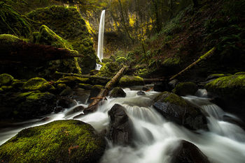 Columbia River Gorge, Elowah Falls, Long Exposure, Moss, Oregon, Pacific Northwest, Waterfall, Streams, Landscape, Beautiful