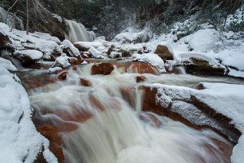Snow White at Douglas Falls