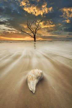 South Carolina, Edisto Island, Botany Bay Plantation, Sunrise, beach, sea shells, long exposure, sand, motion, atlantic, ocean