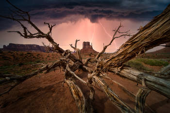 monument valley, dark skies, lightening, storms, canyons, utah, desert, broken tree, amazing, landscape, storm chasing, rain, wind, wild skies, bernard chen, american southwest