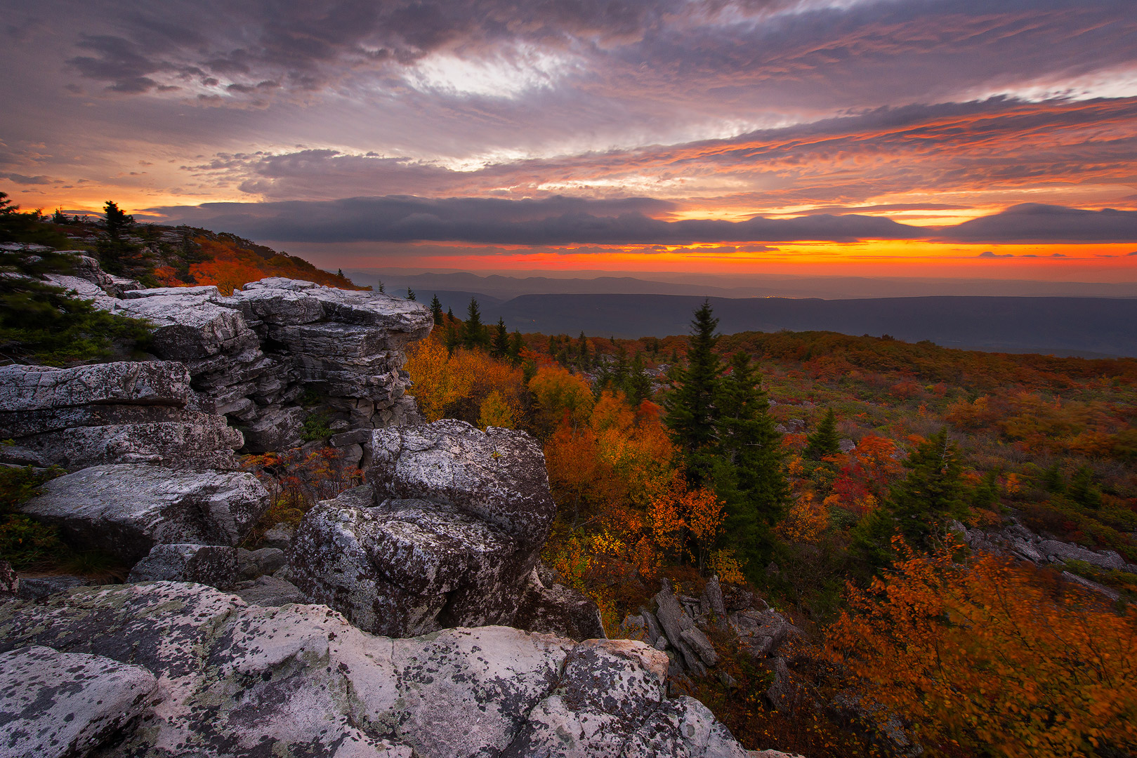 West Virginia, Bear Rocks, Dolly Sods Wilderness, Canaan Valley, Hemlock, Mountain Laurel, Dolly Sods, Allegheny Mountains, Bear Rocks Preserve, Monongahela National Forest, Sunrise, Dramatic Sky, photo