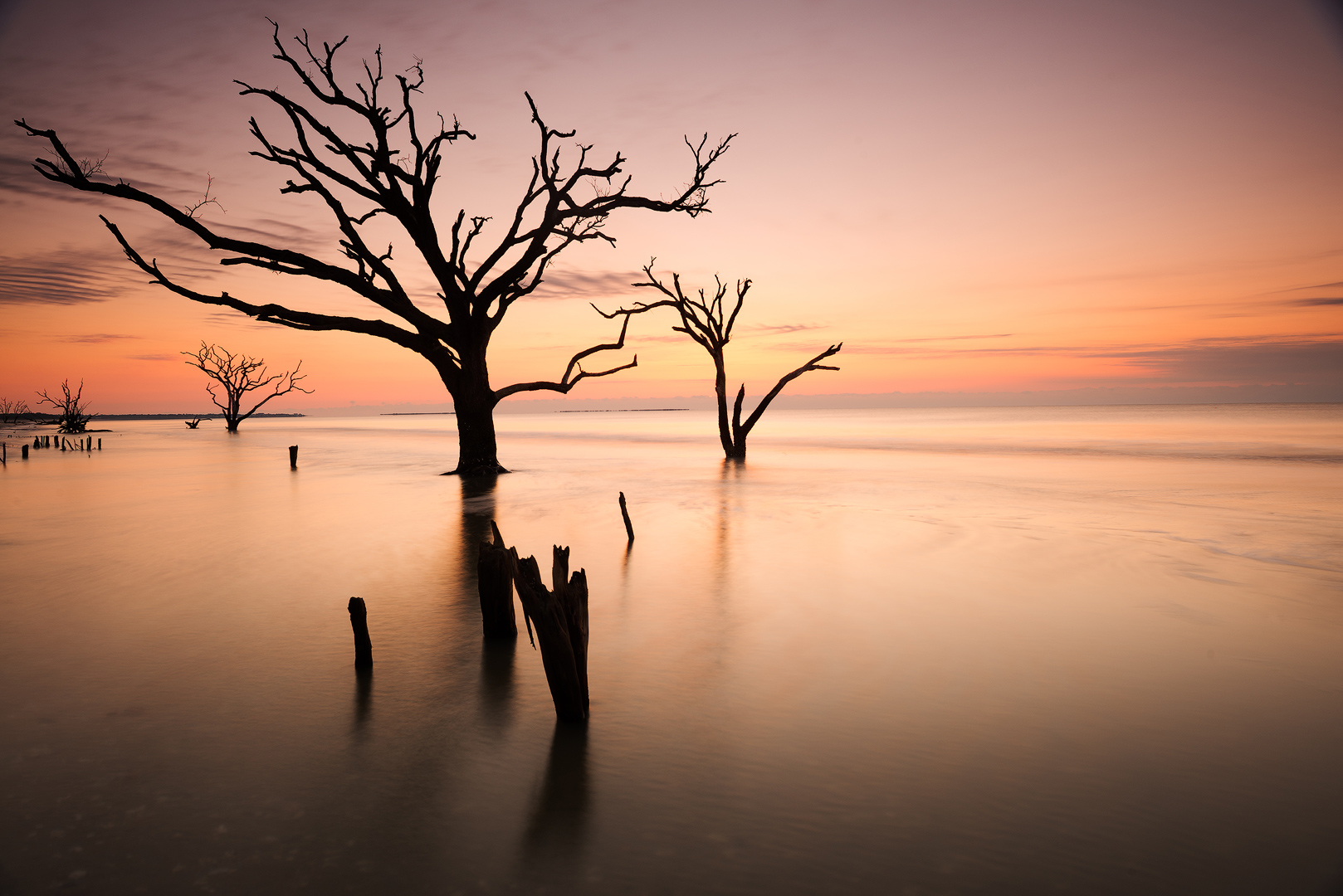 Boneyard Beach, Edisto Island, South Carolina, atlantic, sand, coast, sunrise, trees, dead, water, salt, charleston, plantation, botany bay, bernard chen, timescapes, photo