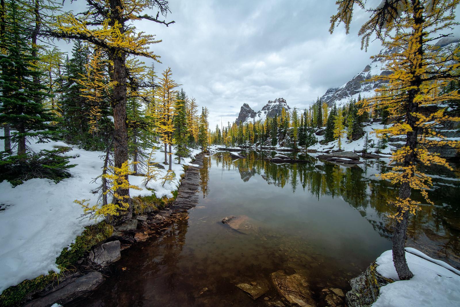 Canada, Glacier, Alberta, Banff, Moraine Lake, Canadian Rockies, Lake Louise, Jasper National Park, Rocky Mountains, Lake Minnewanka, Icefields Parkway, Banff National Park, Lake O'Hara, photo