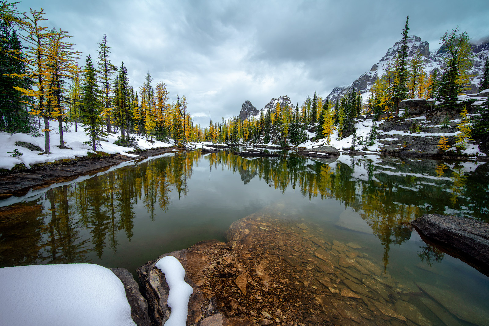 We had just completed our 7 miles trek to Lake O'Hara and made our way up to the plateau, which pretty much exhausted all three...