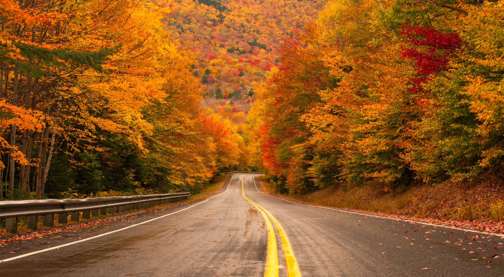 Kancamagus Highway, White Mountains, New Hampshire, Autumn, Bright, Colorful, Leaves, Fall Season, Road, Trees, photo