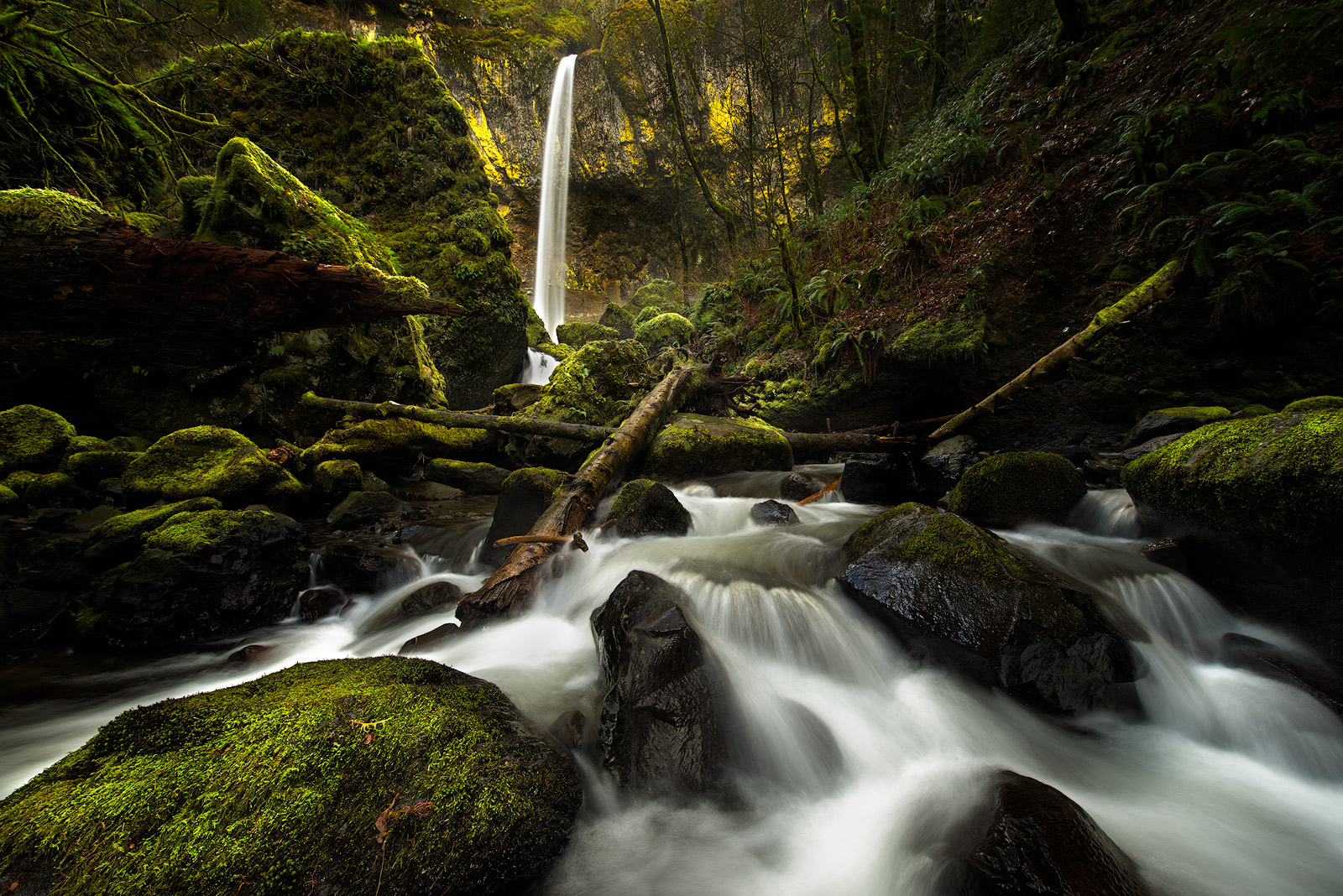 Columbia River Gorge, Elowah Falls, Long Exposure, Moss, Oregon, Pacific Northwest, Waterfall, Streams, Landscape, Beautiful, photo