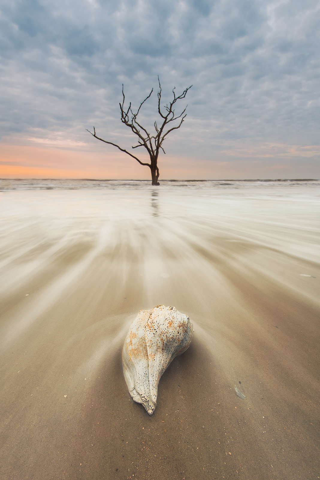 South Carolina, Edisto Island, Botany Bay Plantation, Sunrise, beach, sea shells, long exposure, sand, motion, atlantic, ocean, photo