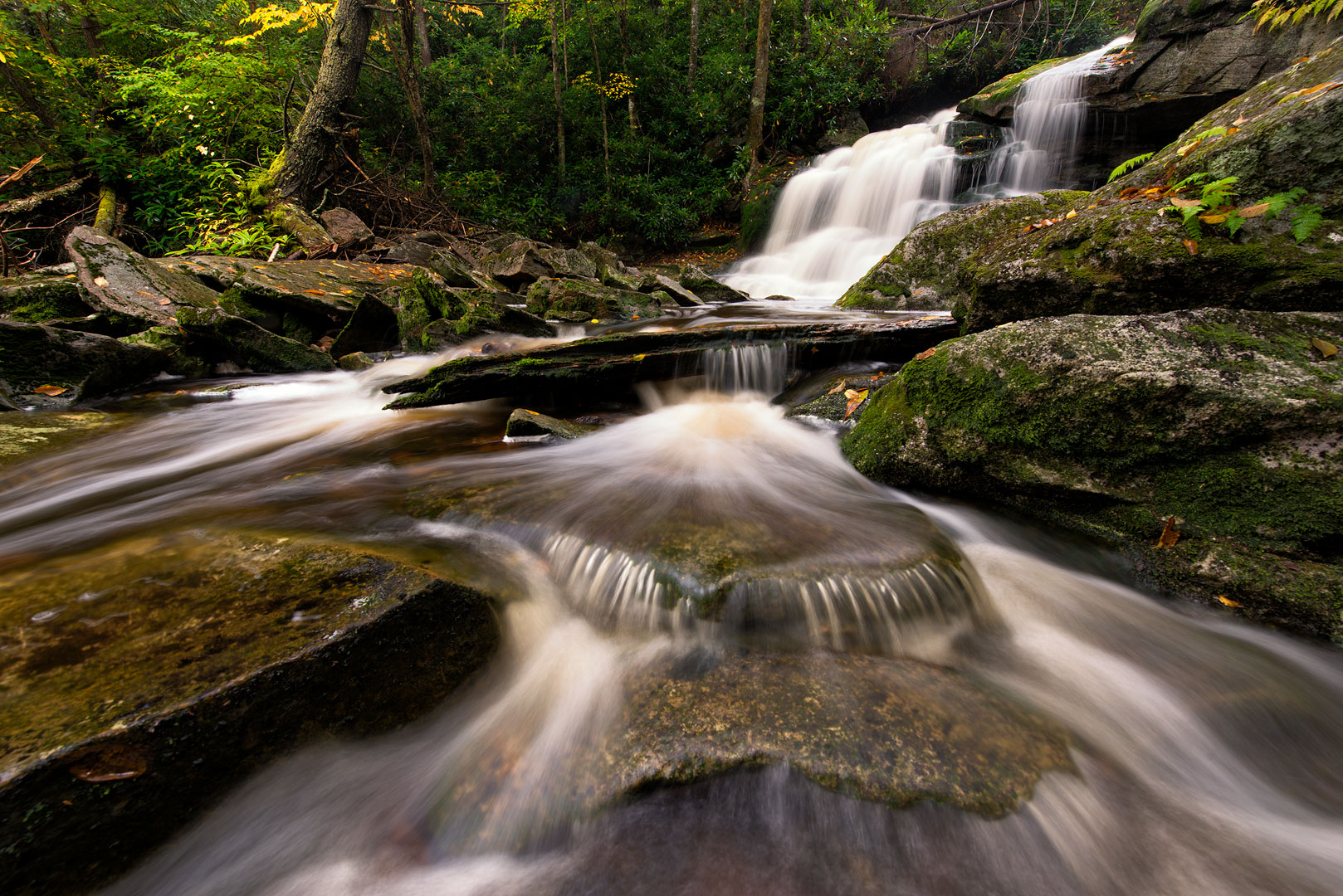 Forest, Water Falls, Ferns, West Virginia, Elakala Falls, Shays Run, Blackwater Canyon, Elakala, Allegheny Mountains, Monongahela National Forest, Blackwater State Park, Third Falls, Day, photo