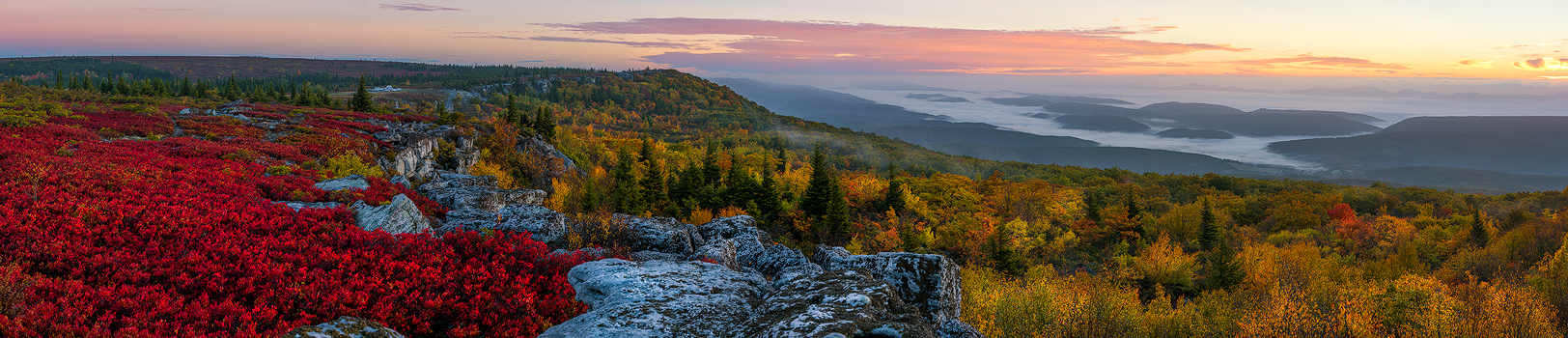 West Virginia, Bear Rocks, Dolly Sods Wilderness, Canaan Valley, Panoramic, Dolly Sods, Allegheny Mountains, Bear Rocks Preserve, Monongahela National Forest, Foggy Morning, Fog, Sun, photo
