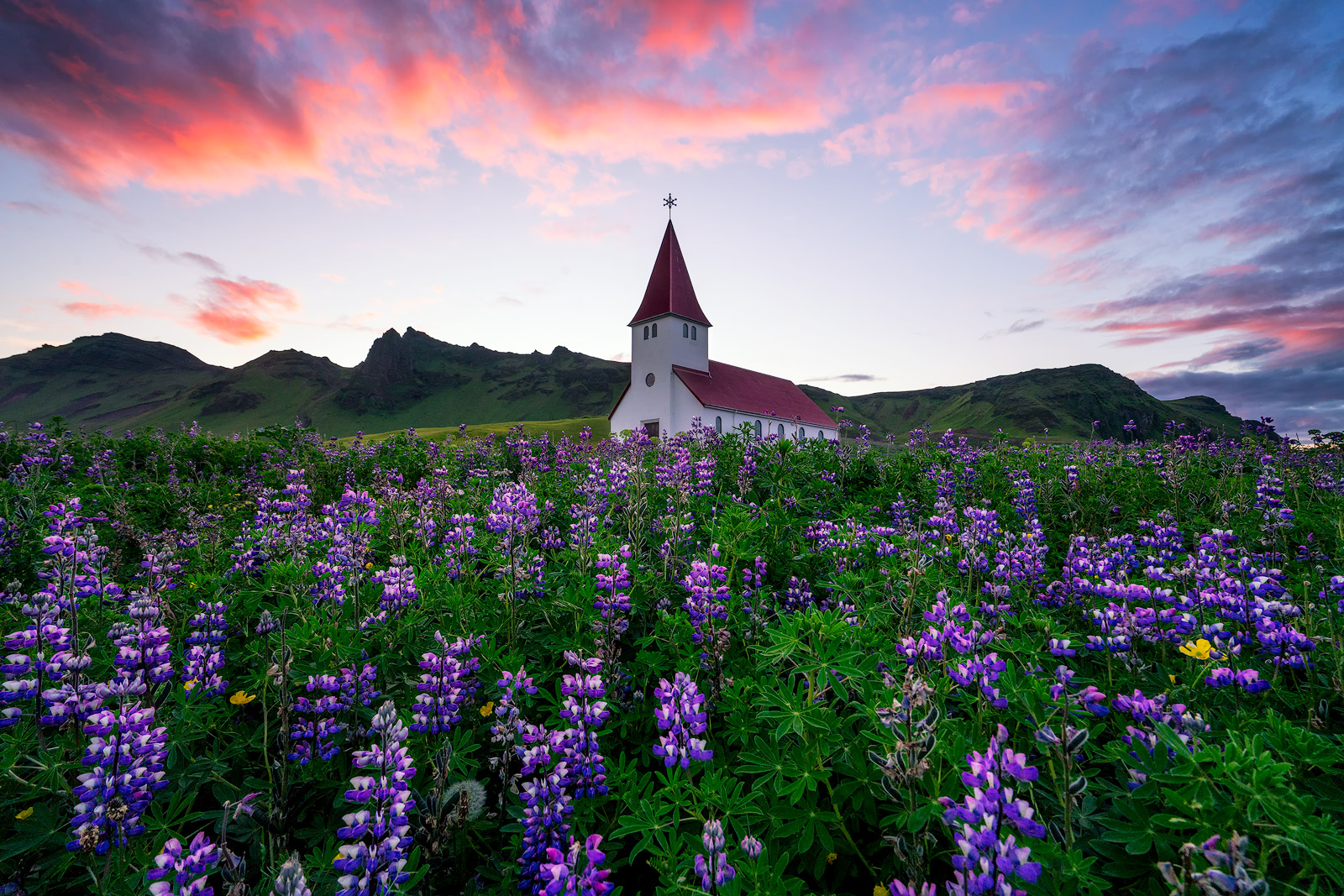 Vik i Myrdal Church, Iceland, Lupines, Sunrise, Flowers, Church, Bernard Chen, photo