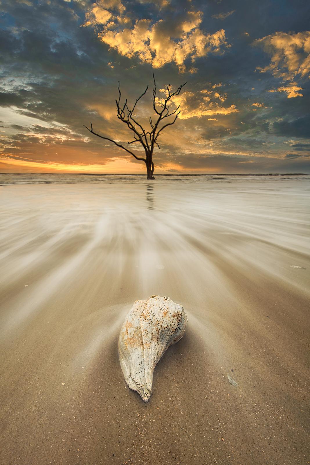 South Carolina, Edisto Island, Botany Bay Plantation, Sunrise, beach, sea shells, long exposure, sand, motion, atlantic, ocean...
