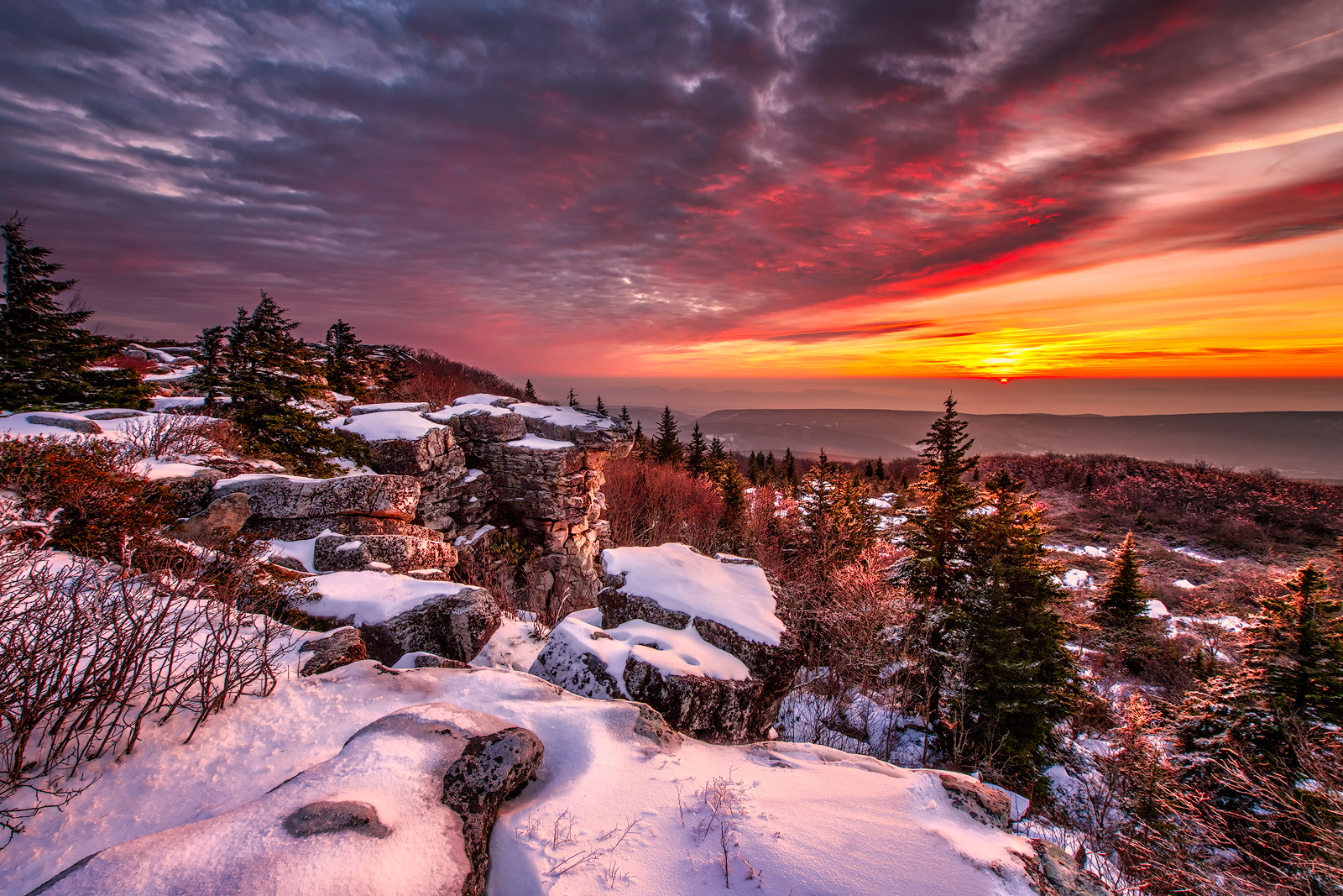 I have photographed many sunrises on Dolly Sods; however, this image will be the most memorable image I have ever captured from...