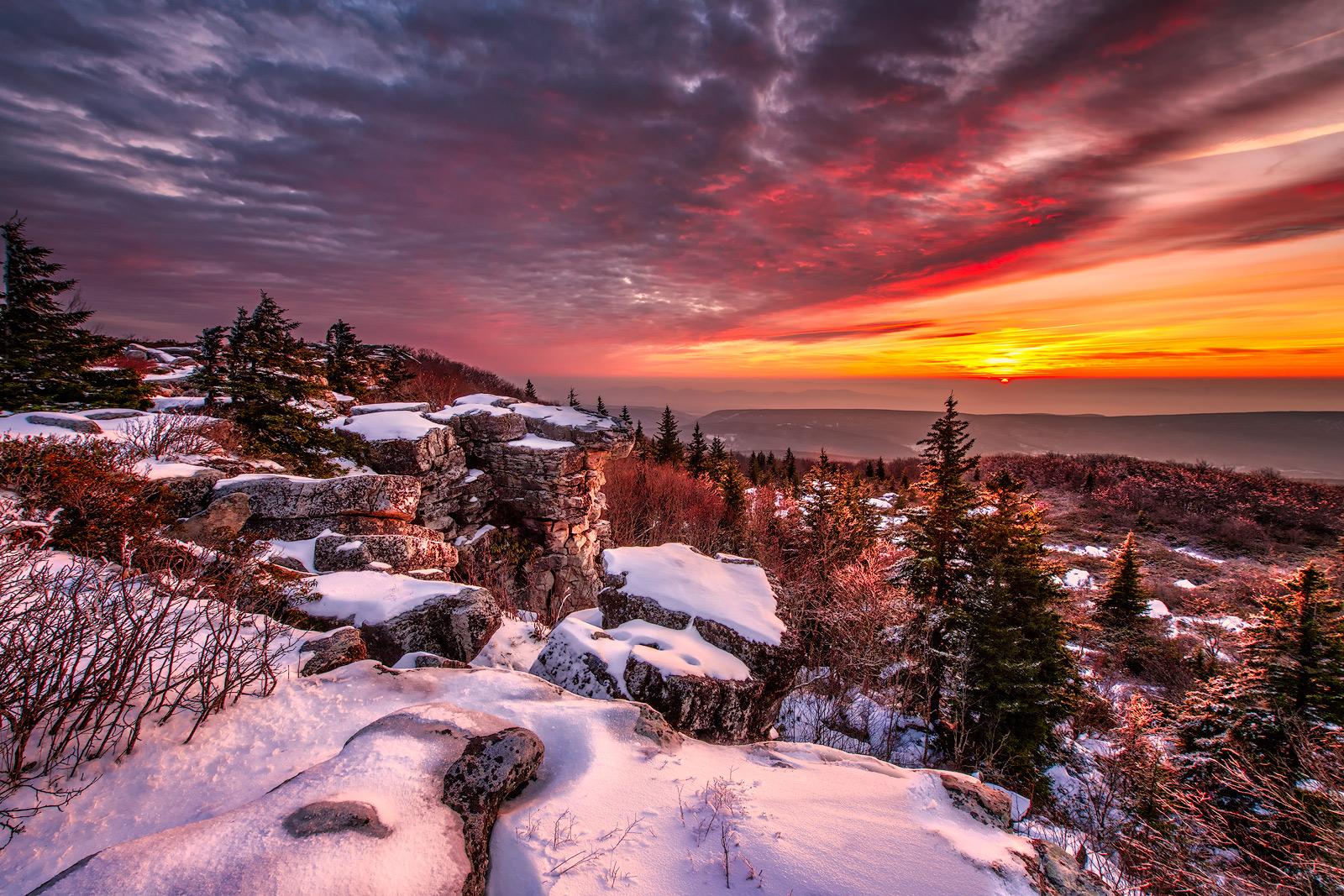 West Virginia, Bear Rocks, Dolly Sods Wilderness, Canaan Valley, Hemlock, Mountain Laurel, Dolly Sods, Allegheny Mountains, Bear Rocks Preserve, Monongahela National Forest, Foggy Morning, Fog, Sun, photo